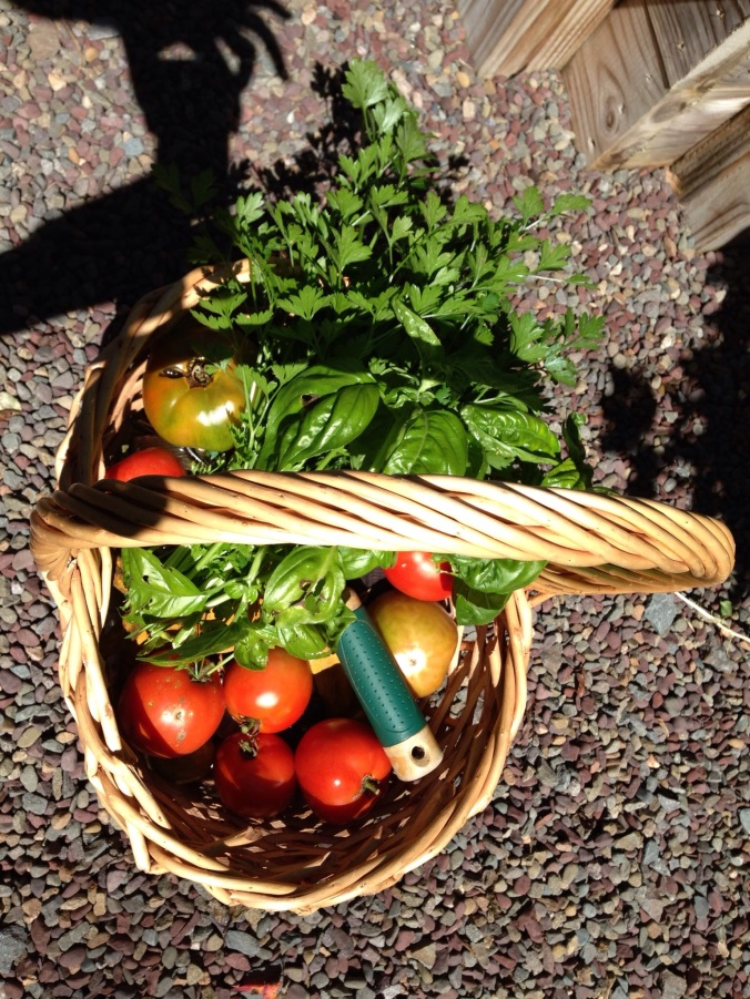Summer Garden Bounty